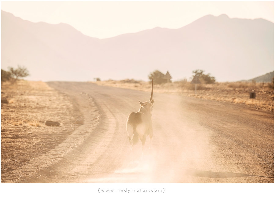 Namibia_Lindy Truter (68)