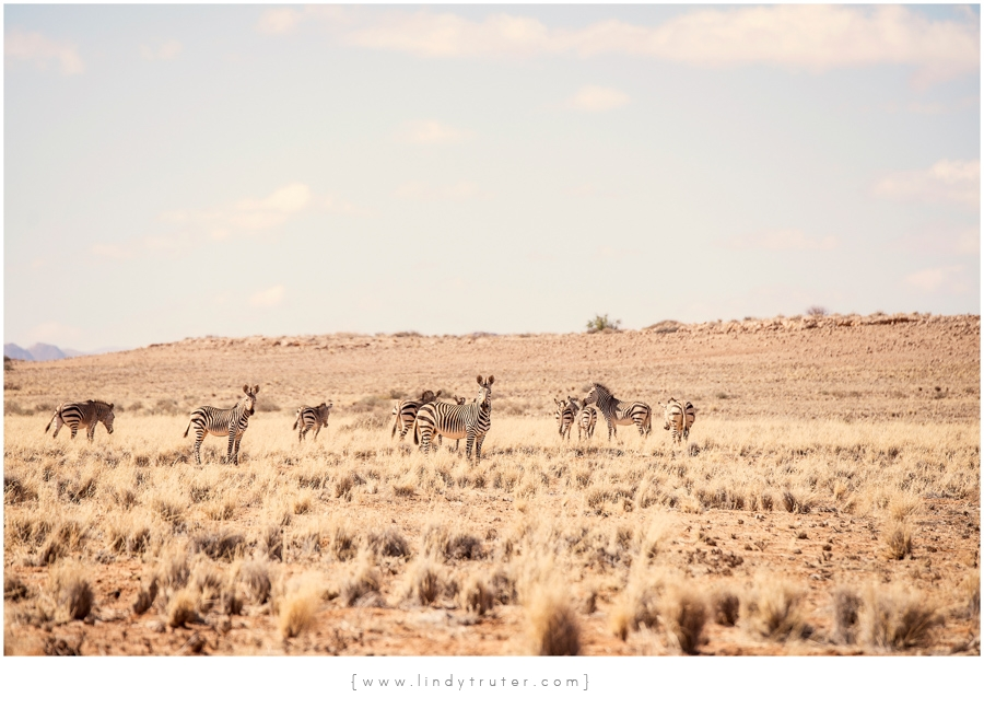 Namibia_Lindy Truter (69)